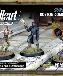 Survivors: Boston Companions