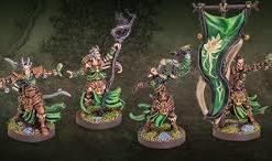 Latari Elves - Infantry Command - Rozwinięcie jednostki